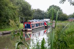 Ashby_De_La_Zouch_Canal-132.jpg