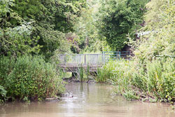 Coventry_Canal-440.jpg