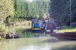 Grand_Union_Canal-3017.jpg