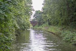 Grand_Union_Canal-3136.jpg