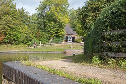 Stratford_Upon_Avon_Canal-3007.jpg