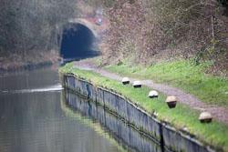 Grand_Union_Canal-1555.jpg
