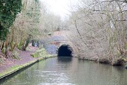 Grand_Union_Canal-1560.jpg