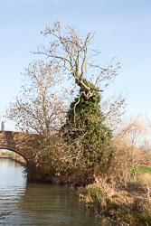 Leicester_Line-572.jpg