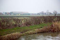 Oxford_Grand_Union_Canal-125.jpg