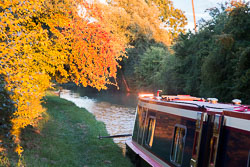 Oxford_Canal_North-1575.jpg