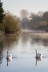 River_Avon_Barton-002.jpg