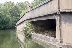 Grand_Union_Canal-1164.jpg