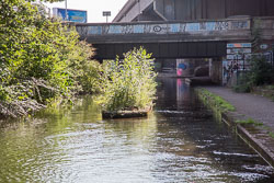 Tame_Valley_Canal-010.jpg