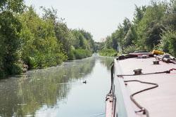 Wednesbury_Old_Canal-004.jpg