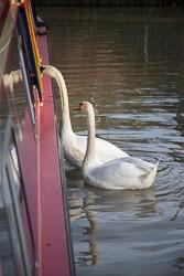 Oxford_Canal_Fenny_Compton_Wharf-606.jpg
