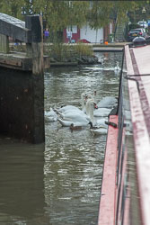 SUAC_Bancroft_Basin_Stratford-Upon-Avon-105-2.jpg