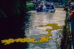 Huddersfield_Canal_455.jpg