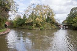 Grand_Union_Canal-654.jpg