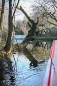 Llangollen_Canal-149