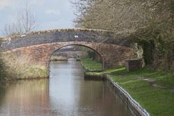 Llangollen_Canal-192.jpg