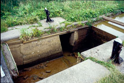 Lock_Repair_Llangollen_Canal-001.jpg
