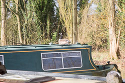 Old_Stratford_Arm,_Grand_Union_Canal-066.jpg