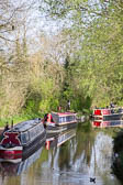 Oxford_Canal_Thrupp-005