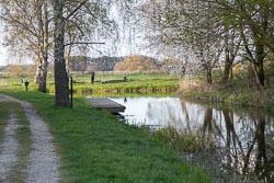 Pocklington_Canal-083.jpg