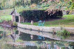 River_Avon_Welford-On-Avon-007.jpg