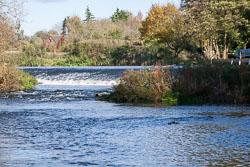 River_Avon-011.jpg