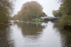 River_Avon-026.jpg