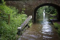 Woodseaves_Cutting_Shropshire_Union_Canal-001.jpg