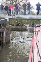 Stratford_Upon_Avon_Canal-197.jpg