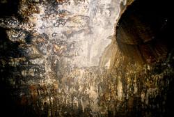Foulridge_Tunnel,_Leeds-Liverpool_-003.jpg