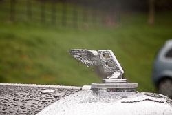 Bentley_-107.jpg