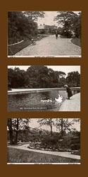 Old_Parks_-002.jpg