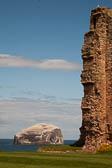 Bass Rock, Tantallon Castle -002-2
