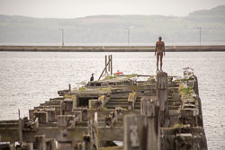 Leith_Docks_-016.jpg