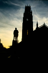 Boston_Stump_-201.jpg