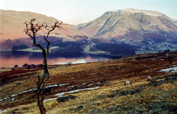 Crummock_Water,_Lake_District_618.jpg