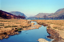 Galesgarthgale_Beck,_Lake_District_602.jpg