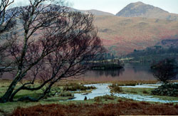 Lake_District_518.jpg