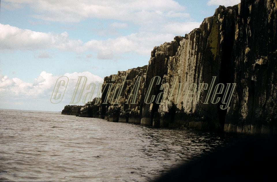 Farne_Islands_067.jpg