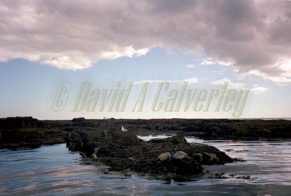 Northumberland_110.jpg