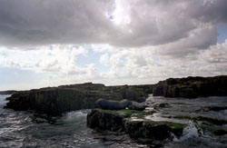 Farne_Islands_-004.jpg