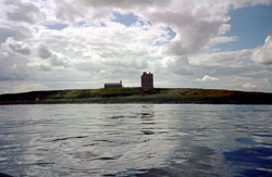 Farne_Islands_-008.jpg