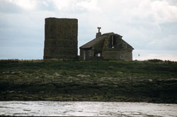 Farne_Islands_058.jpg
