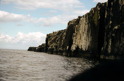 Farne_Islands_067.jpg