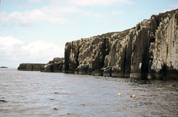 Farne_Islands_068.jpg