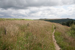 Sutton_Bank_-020.jpg