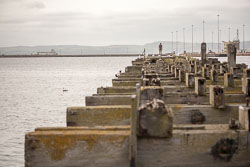 Leith_Docks_-024.jpg