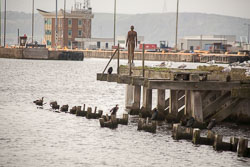 Leith_Docks_-028.jpg