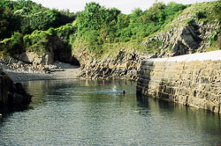 Pembroke_Coast_nr_Broad_Haven_002.jpg