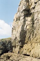 Pembroke_Coast_nr_St_Govan's_Head_007.jpg
